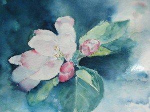 fleur de pommierrec