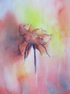 Une rose (1)